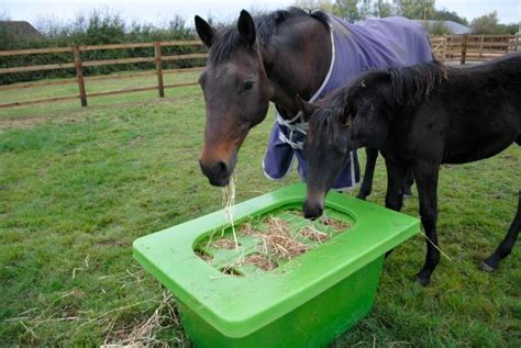 Feeders For Horses Uk hay saver hay saver