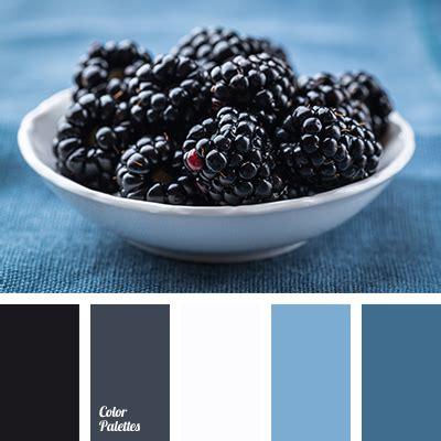 blackberry color blackberry color palette ideas