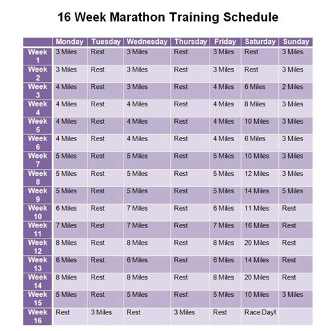 running your marathon the complete 20 week marathon plan books 74 best images about plans for alex on