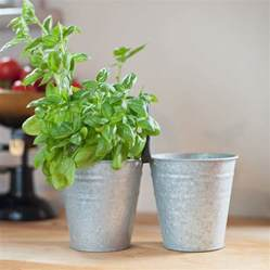 Metal Plant Pots Zinc Metal Plant Pots Set Of Two By The Orchard