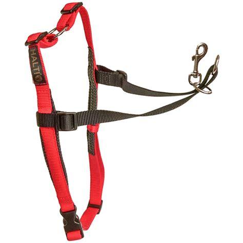 halti harness company of animals halti harness for dogs harnesses