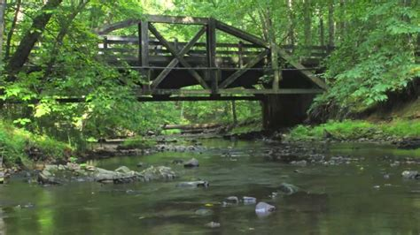 prince william forest park a princely timelapse
