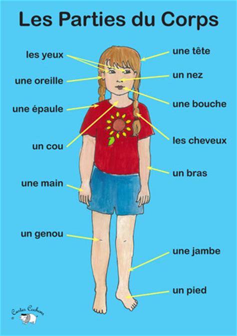 le corps poster les parties du corps little linguist