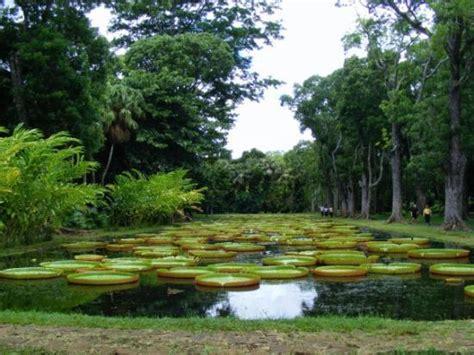 Free State National Botanical Garden Bloemfontein 2018 Free Botanical Gardens