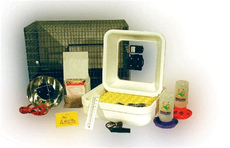 Incubator Longsleve 2 murray mcmurray hatchery classroom incubator and brooder kit