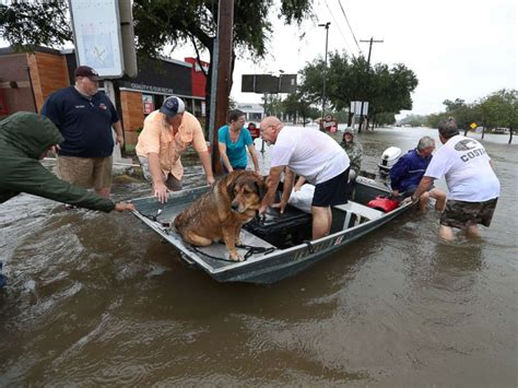 hurricane boats dallas tx hurricane harvey hundreds of rescues thousands of 911
