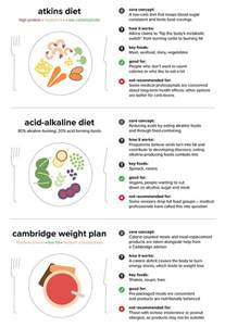18 most popular diets and which is right for you revealed daily mail