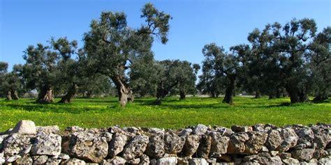 cing giardini naxos les pouilles italia dolce