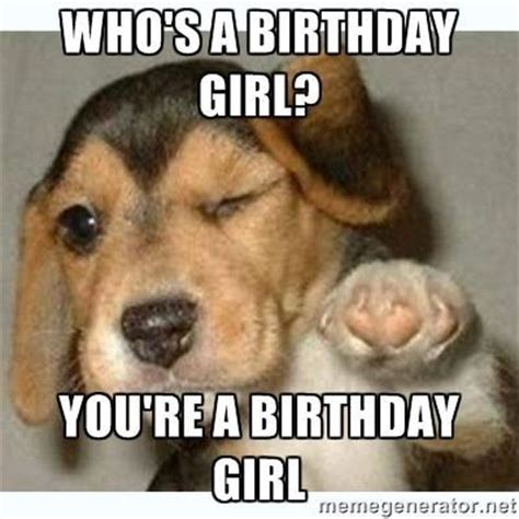 Rude Happy Birthday Meme - 17 best ideas about birthday girl meme on pinterest