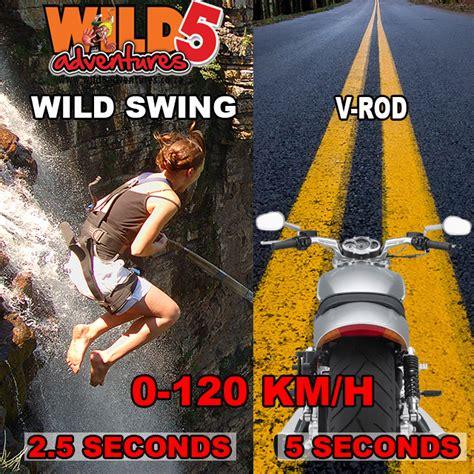 wild swing wild swing vs v rod wild5adventures co za