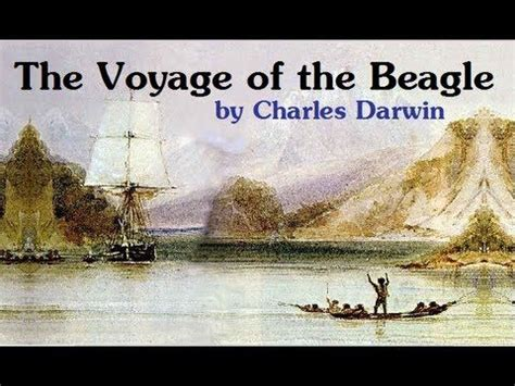 the voyage of the beagle books 58 best images about darwin evolution on