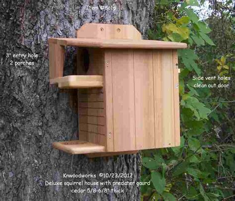 Squirrel Houses Plans Squirrel House Plans Squirrel House Plans House List Disign Plans To Build A Squirrel House