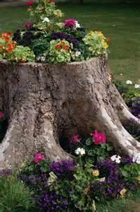 tree stump planter my green thumb