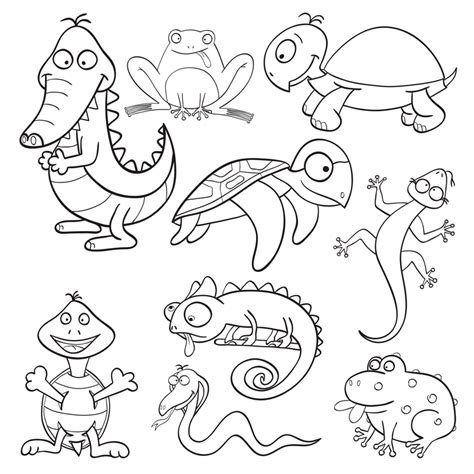 reptiles and amphibians coloring pages coloring pages