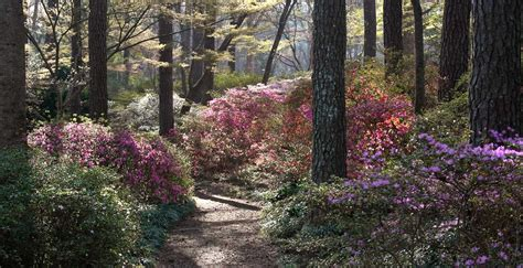 Callaway Gardens by Callaway Gardens Vacation Travel Guide And Tour