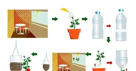 Botellas De Plastico Construccion Y Manualidades Hazlo Tu Mismo   plantar tomates en botellas de pl 225 stico construccion y