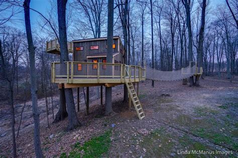 dog tree house jaw dropping tree house a dream come true for lambertville family new hope free press