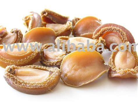 Kerang Abalone kerang mata tujuh abalone products indonesia kerang mata