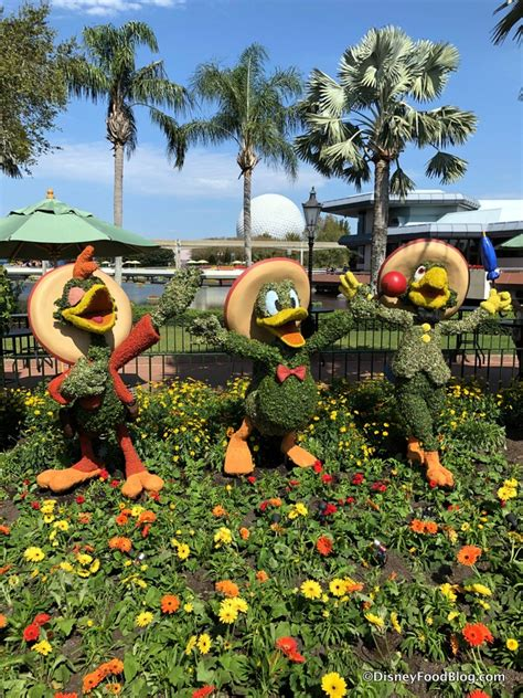 epcot international flower and garden festival the
