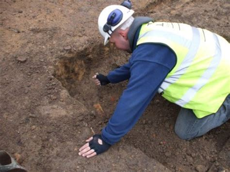 Why Does Dig At The by Prescot Dig Why Do Archaeologists Dig