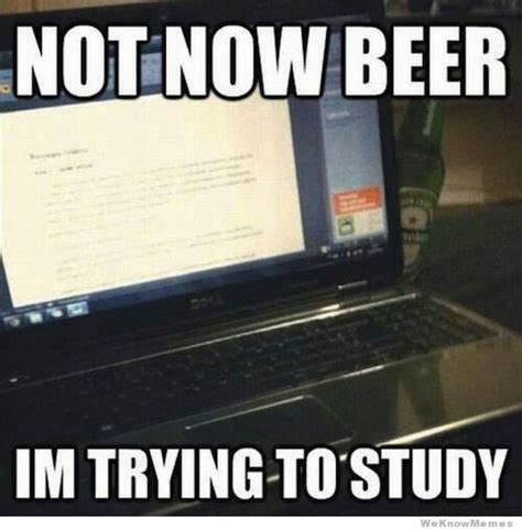 Beer Shits Meme - not now beer weknowmemes