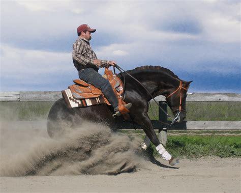 Ramona Grey Palomino reference sires malin morgans stallions of the past