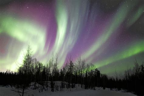 new year northern lights see the northern lights in these states on new year s