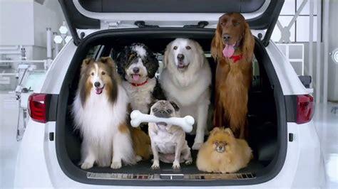 suburu hair salon dog 2018 subaru dog commercial new car release date and