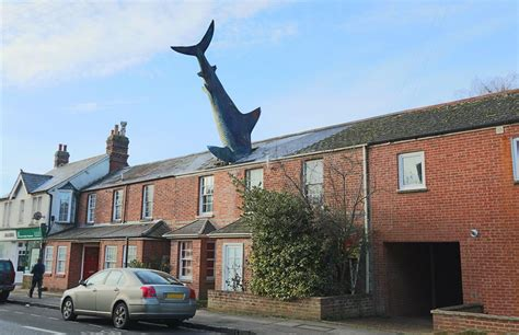 shark house the shark house in oxford is available to rent