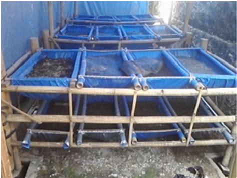 Rak Vertikultur budidaya cacing tanah lam community development