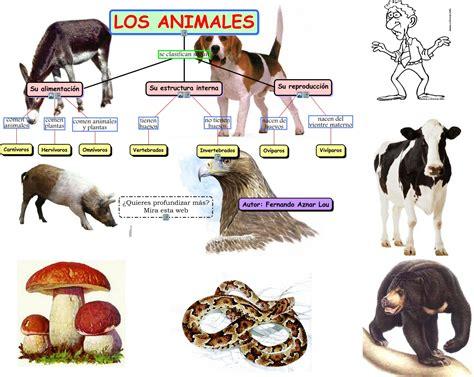 imagenes de animales por su alimentacion los animales