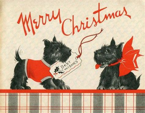 christmas spirit   retro greeting cards complete  puppies  kittens