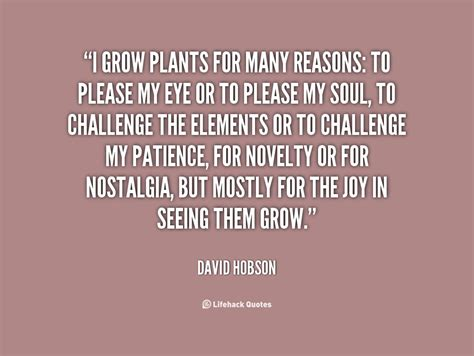 quotes for in quotes about growing plants quotesgram