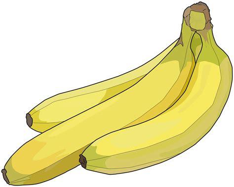 Dessin En Couleurs 224 Imprimer Nature Fruits Banane