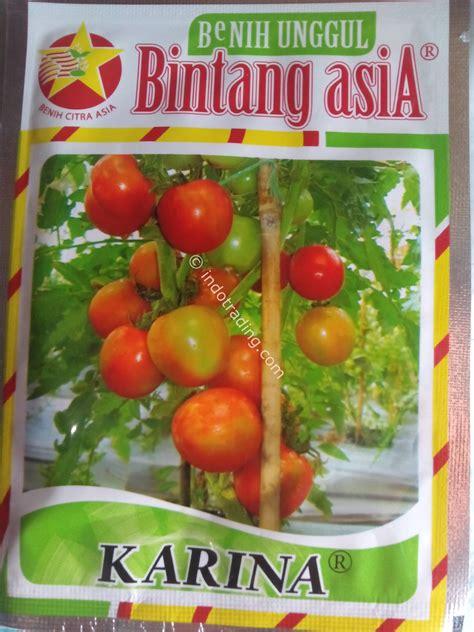 Bibitbenih Tomat Murah jual benih tomat harga murah bogor oleh karya barokah
