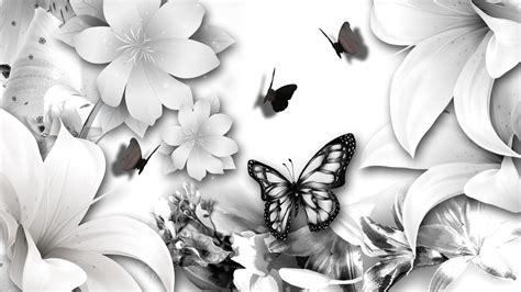 black and white butterfly wallpaper undefined black and white backgrounds wallpapers 4