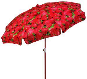 wann sind immer semesterferien erdbeerzeit wann gibt es frische erdbeeren erdbeersaison