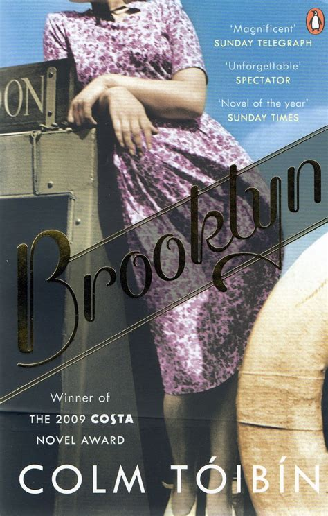 themes in the book brooklyn brooklyn by colm toibin review