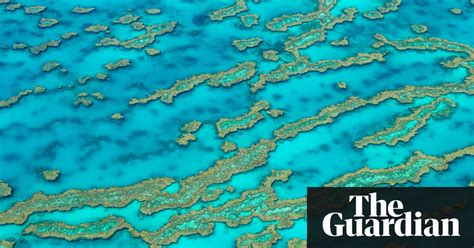 great barrier reef   sky  pictures art