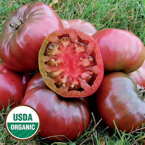 Tomato Purple Seeds purple organic tomato seed savers exchange