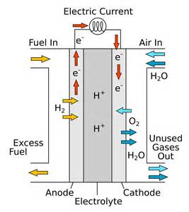 Proton Exchange Fuel Cell Proton Exchange Membrane Fuel Cells Talk Nerdy To Me