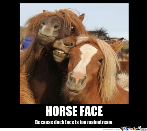 Horse Head Meme - horse face meme www pixshark com images galleries with