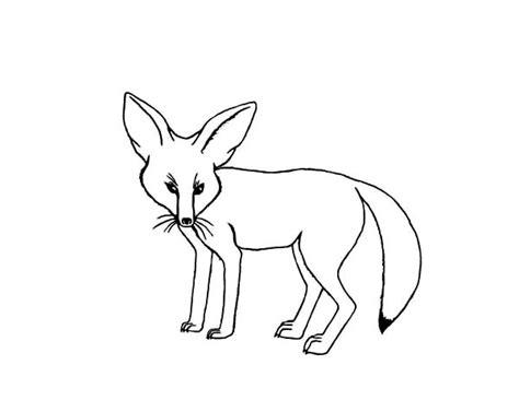 desert fox coloring page desert fox coloring pages sketch coloring page