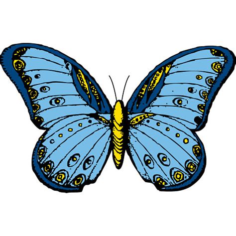 free pictures of butterflies cliparts co