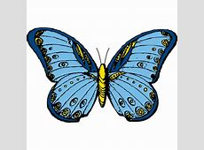 Free Butterfly Clip Art Graphics   Clipart library - Free ... Free Clipart Downloads Butterflies