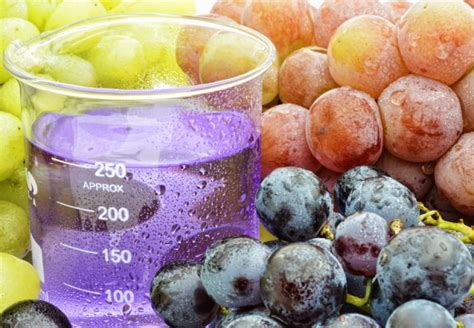 fruit extracts fruit extracts and soft skin vine vera reviews and giveaways