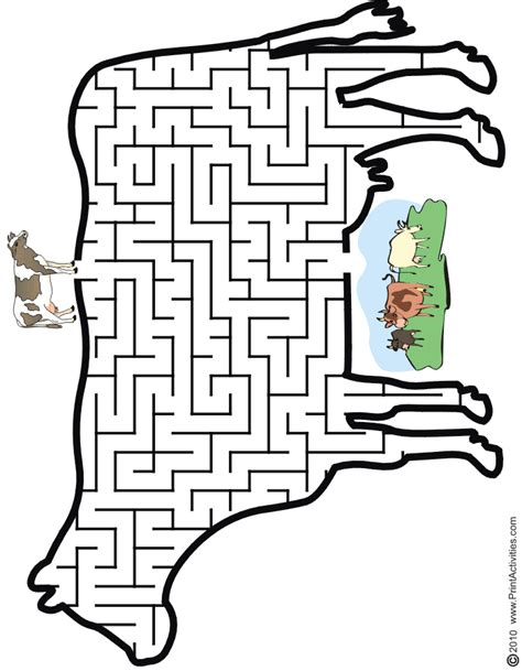 printable cheetah maze cow maze help the cow thru the maze to find the pasture