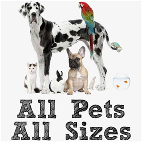 Going Rate For House Sitting With Pets by Services Pet Sitting Pet Sitters Boarding