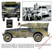 White M3 Scout Car Photo 253818 Complete Collection Of