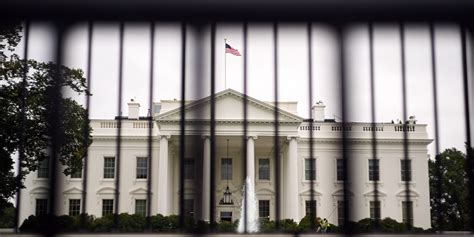 White House Fence by Tackled By Secret Service Agents Dogs After Jumping